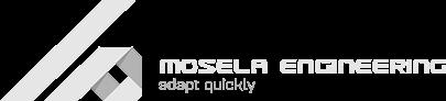 logo1testgrey